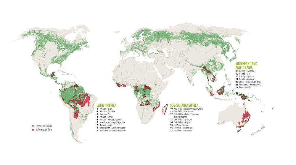 Deforestation Statistics